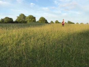 Woman practising Sun Salutations in a field of grass